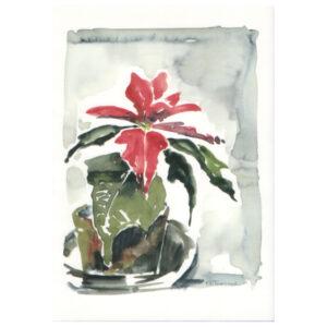 014 - Weihnachtsstern