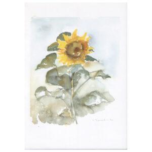 015 - Sonnenblume