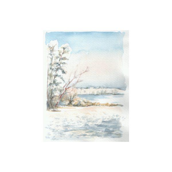304 - Winterstudie